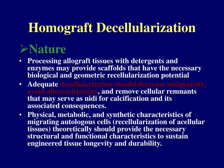 Homograft Decellularization