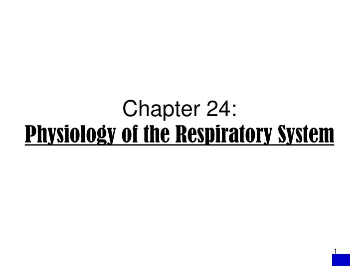 chapter 24 physiology of the respiratory system n.