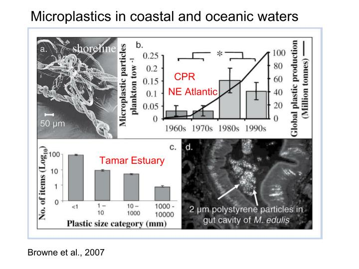 Microplastics in coastal and oceanic waters