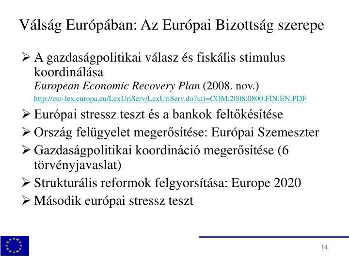 Válság Európában: Az Európai Bizottság szerepe