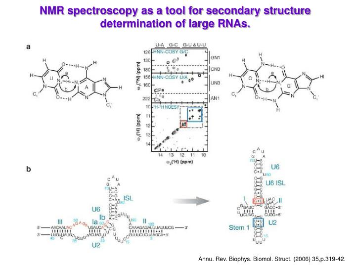 NMR spectroscopy as a tool for secondary structure determination of large RNAs.