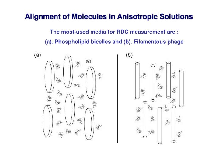 Alignment of Molecules in Anisotropic Solutions