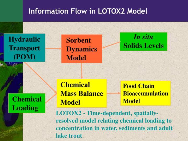Information Flow in LOTOX2 Model