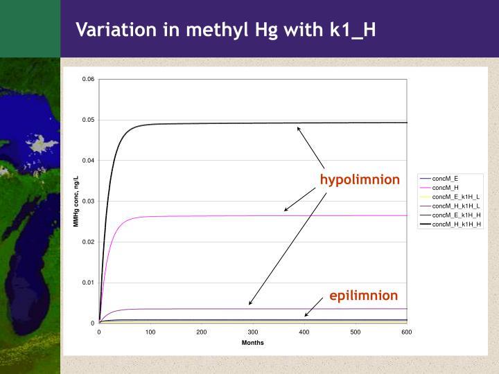 Variation in methyl Hg with k1_H