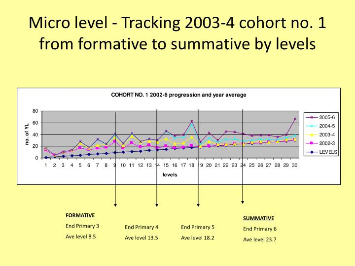 Micro level - Tracking 2003-4 cohort no. 1 from formative to summative by levels