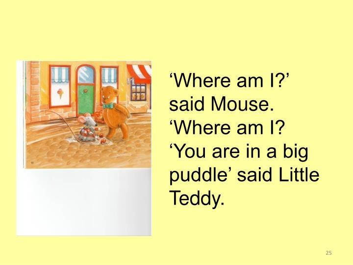 'Where am I?' said Mouse.