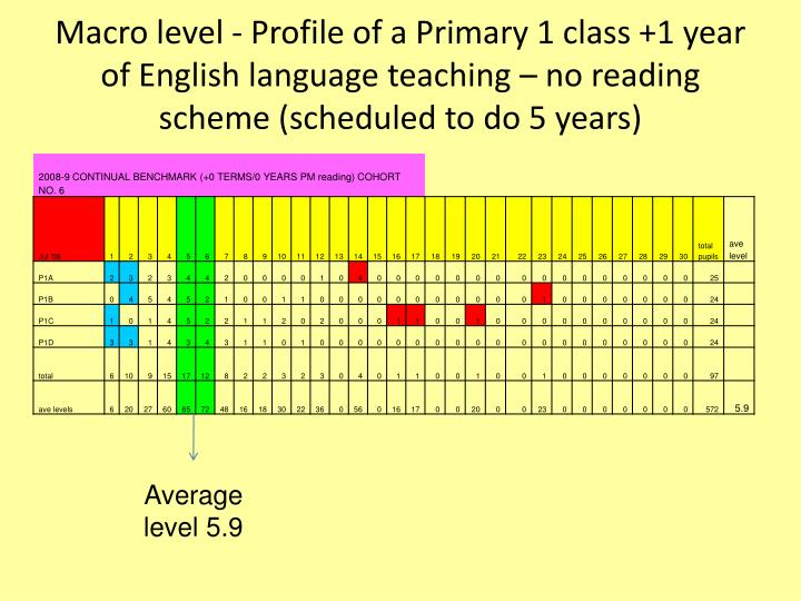 Macro level - Profile of a Primary 1 class +1 year of English language teaching – no reading scheme (scheduled to do 5 years)