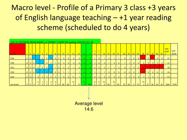 Macro level - Profile of a Primary 3 class +3 years of English language teaching – +1 year reading scheme (scheduled to do 4 years)