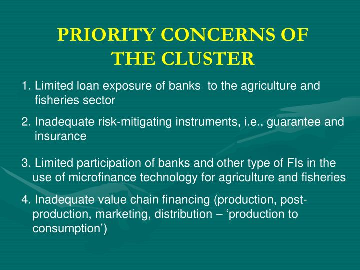 PRIORITY CONCERNS OF THE CLUSTER