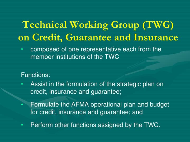 Technical Working Group (TWG) on Credit, Guarantee and Insurance