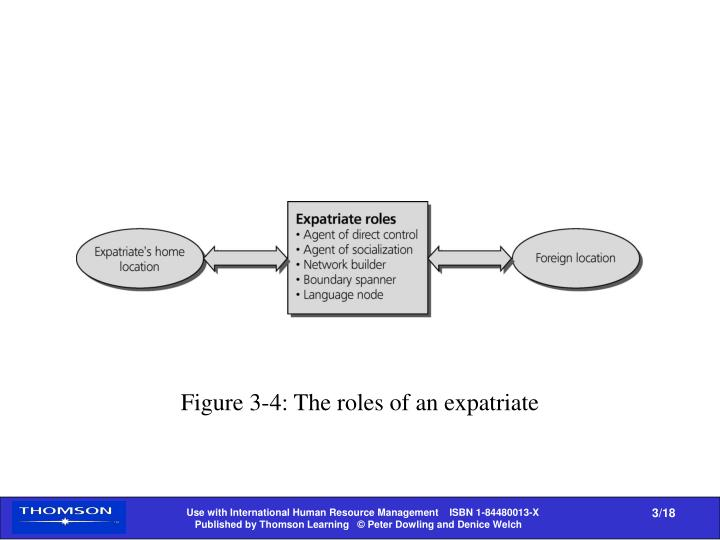 Figure 3-4: The roles of an expatriate