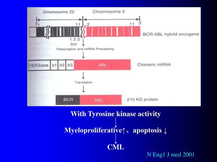 With Tyrosine kinase activity
