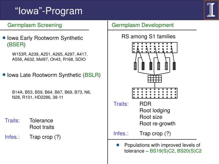 """""""Iowa""""-Program"""