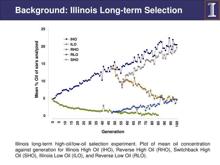 Background: Illinois Long-term Selection