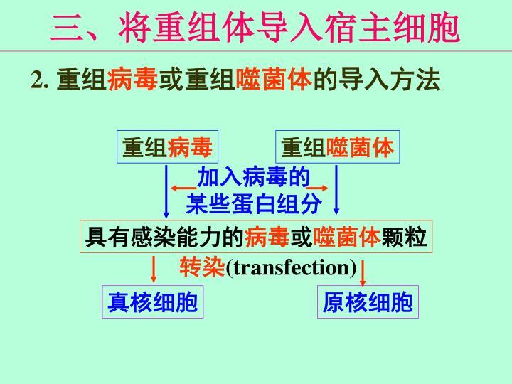 三、将重组体导入宿主细胞