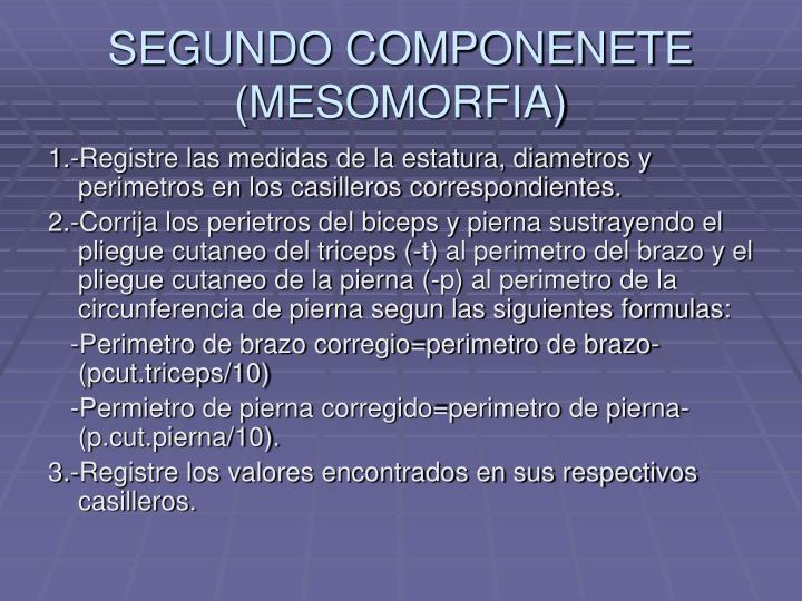 SEGUNDO COMPONENETE