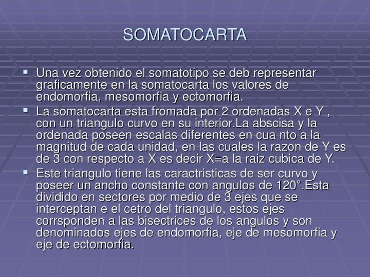 SOMATOCARTA