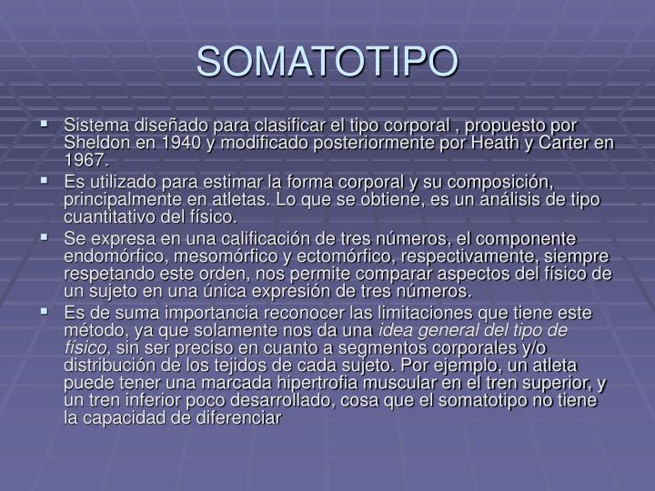 Somatotipo1