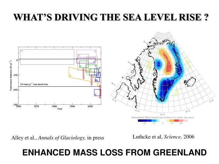 WHAT'S DRIVING THE SEA LEVEL RISE ?