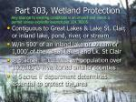 part 303 wetland protection