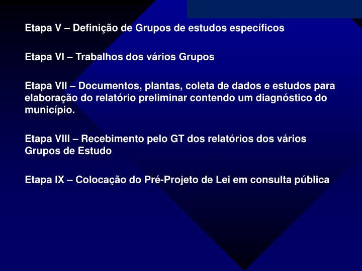 Etapa V – Definição de Grupos de estudos específicos