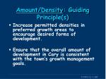 amount density guiding principle s