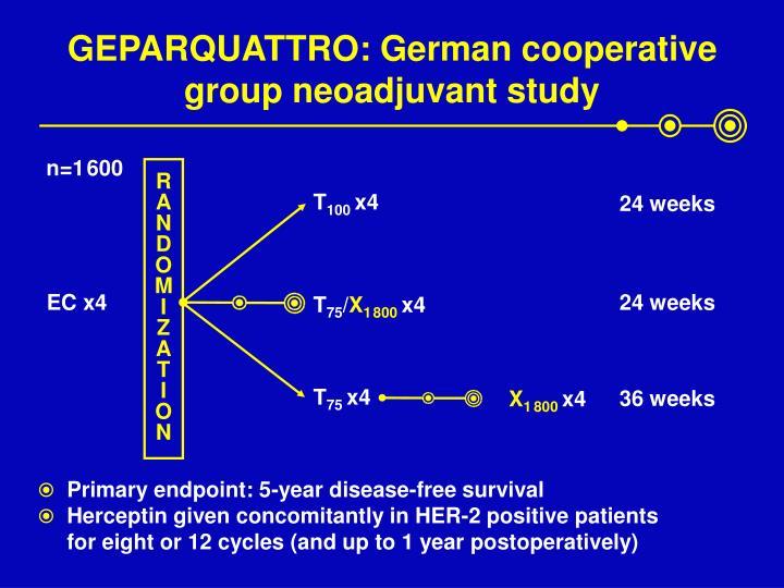 GEPARQUATTRO: German cooperative group neoadjuvant study