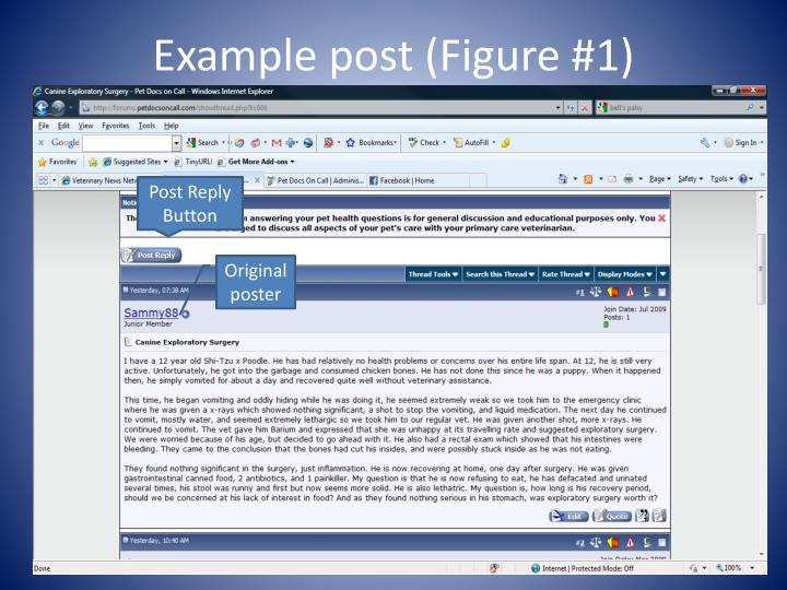 Example post (Figure #1)