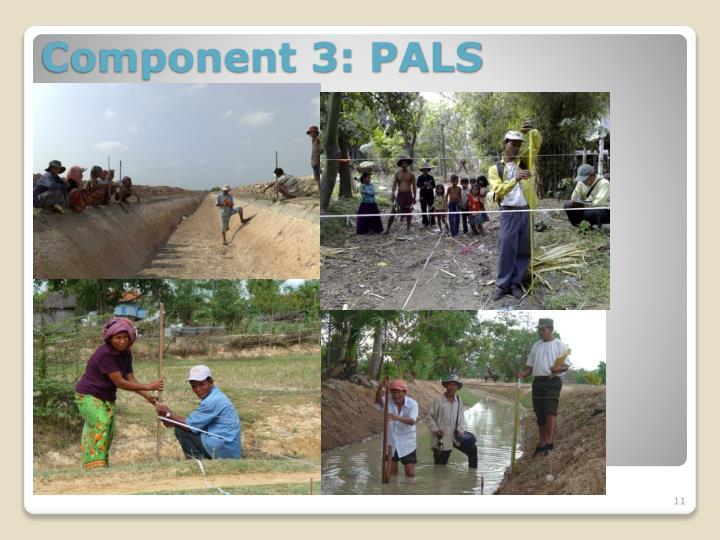 Component 3: PALS