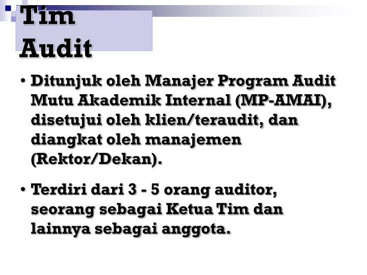 Tim Audit