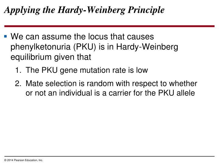 Applying the Hardy-Weinberg Principle