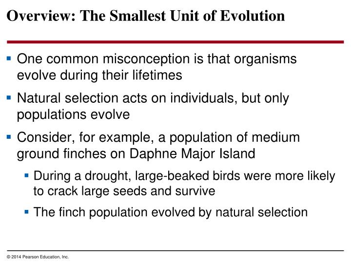 Overview the smallest unit of evolution