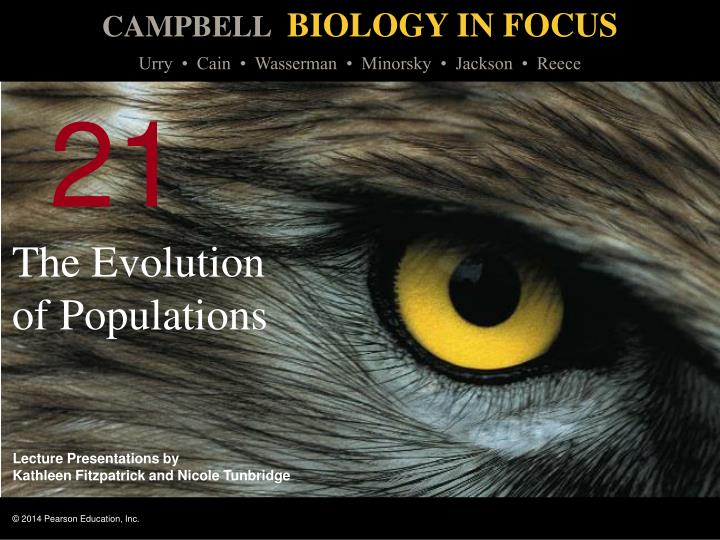 the evolution of populations n.