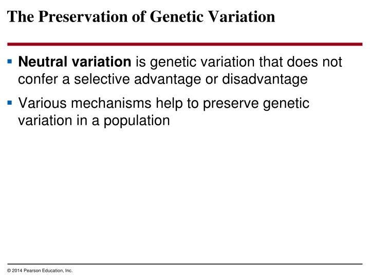 The Preservation of Genetic Variation