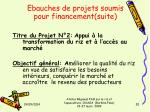 ebauches de projets soumis pour financement suite2