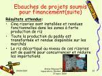 ebauches de projets soumis pour financement suite4