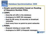 database synchronization isis