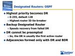 designated routers ospf