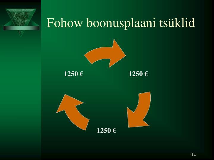 Fohow boonusplaani tsüklid