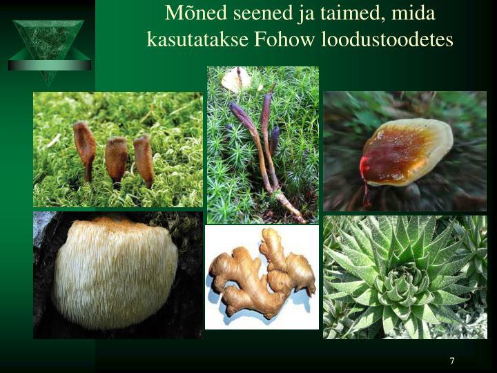 Mõned seened ja taimed, mida kasutatakse Fohow loodustoodetes