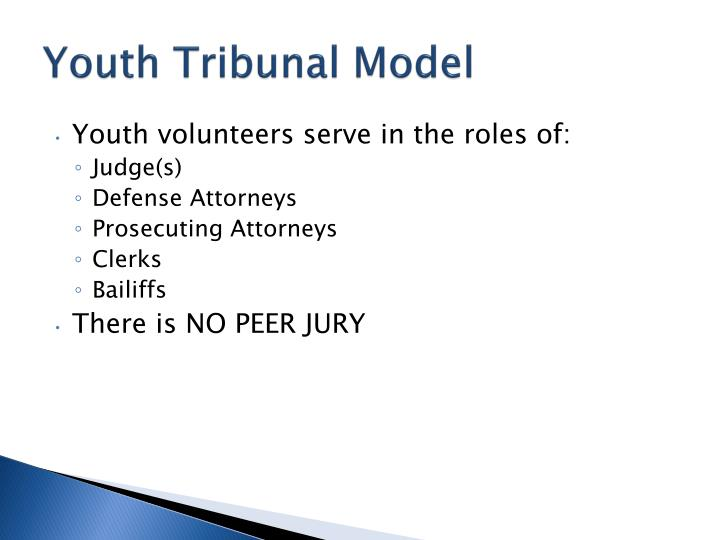 Youth Tribunal Model
