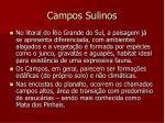 campos sulinos2