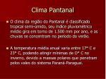 clima pantanal