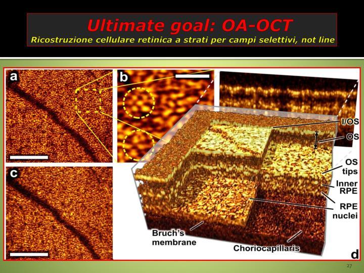 Ultimate goal: OA-OCT
