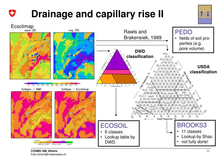 Drainage and capillary rise II