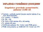 influenza pand mico h1n1 200930