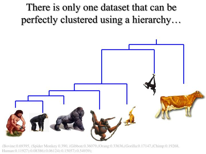 There is only one dataset that can be perfectly clustered using a hierarchy…