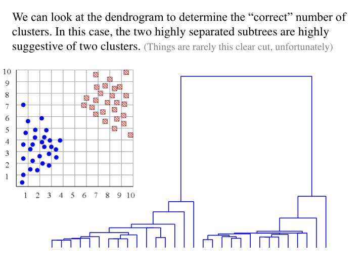 "We can look at the dendrogram to determine the ""correct"" number of clusters. In this case, the two highly separated subtrees are highly suggestive of two clusters."