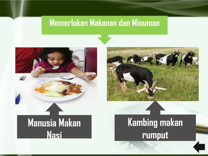 Memerlukan Makanan dan Minuman