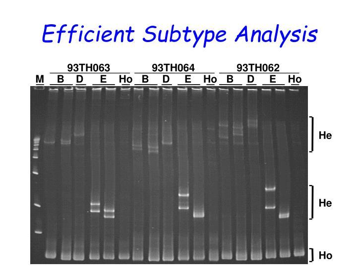 Efficient Subtype Analysis